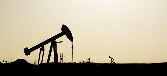 Нефть по $55 устраивает