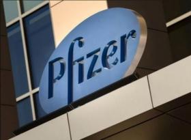 Pfizer временно сократит