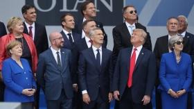 НАТО все еще не может