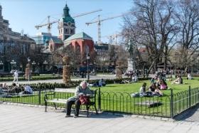 Арифметика шведской