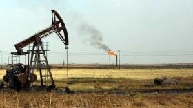 Какой объем нефти